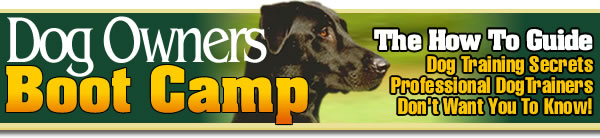 Offering an e-book resource for dog training, dog grooming, house training, and general pet care for all dog breeds.